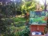 cernak-autumnal-glen-ellyn-painting-4web