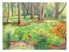 cernak-autumnal-glen-ellyn-painting-web