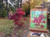 cernak-japanese-maple-tree-painting-1web