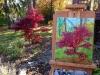 cernak-japanese-maple-tree-painting-5web